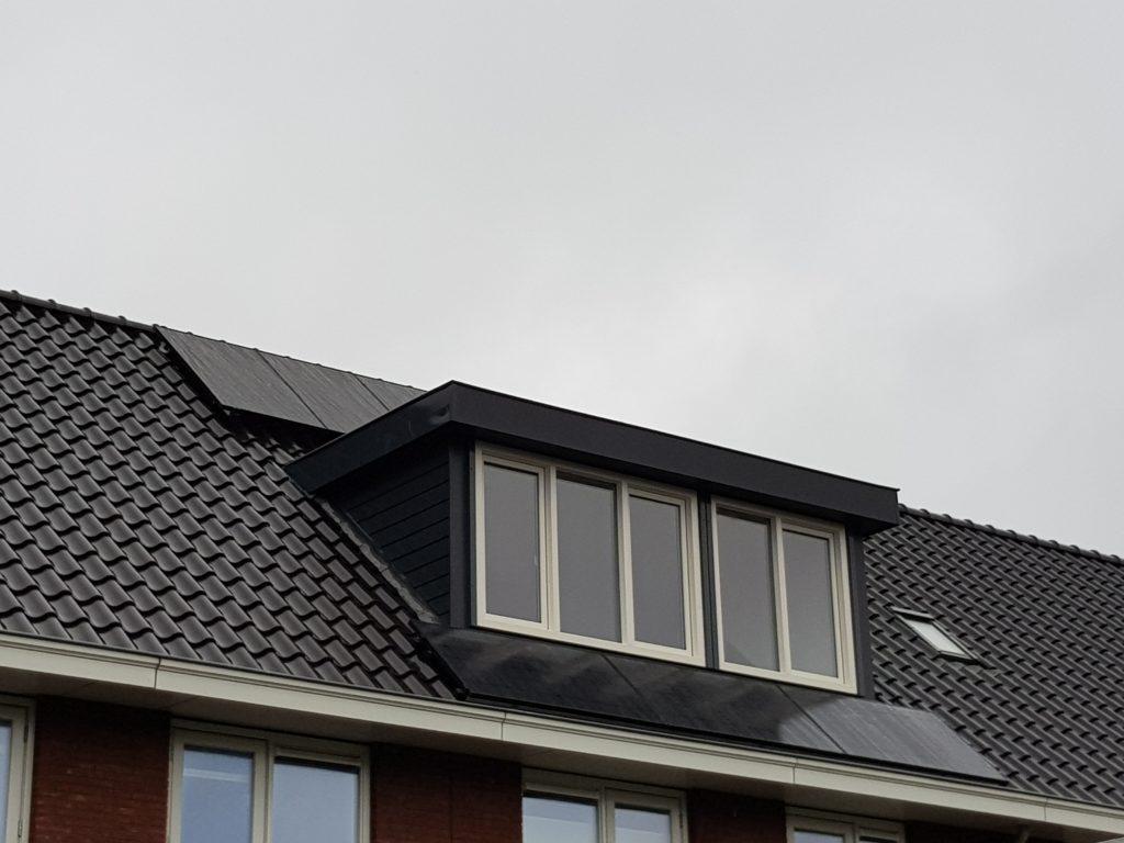 Duurzame energie zonnepanelen dordrecht LG Neon 2 Full black