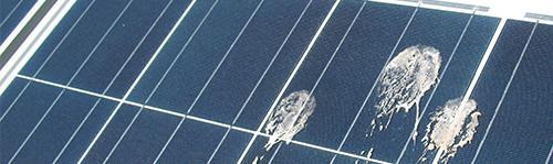 Vogelpoep zonnepaneel